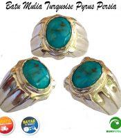 Batu Mulia Cincin Akik Turquoise Pyrus Persia Natural