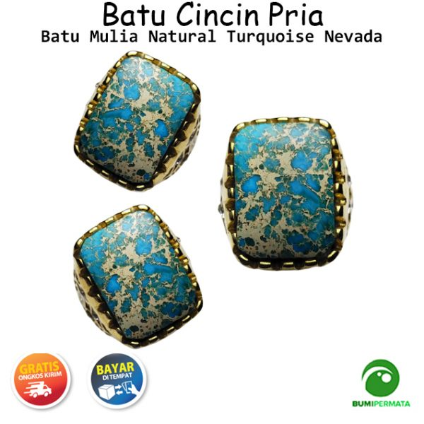 Batu Cincin Akik Pyrus Nevada Ring Titanium Kotak