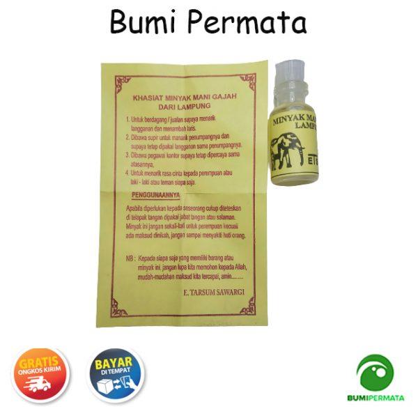 Minyak Mani Gajah Lampung 1
