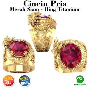Naga 3D Baja Titanium Emas Kristal Rubi Berlian Perhiasan Fashion Pria Patung Hewan Cincin Punk Gold Rings